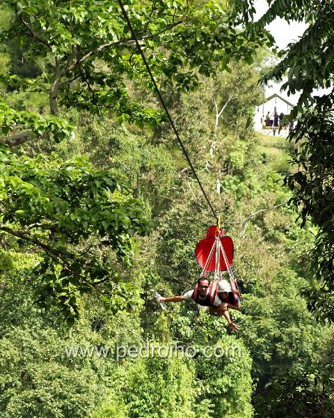 Longest Zipline on Lake Sebu forest